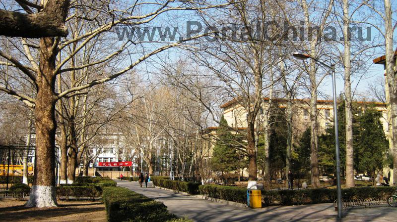 Пекинский Университет Языка и Культуры (1)