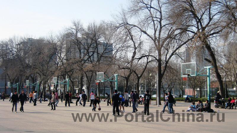 Пекинский Университет Языка и Культуры (15)
