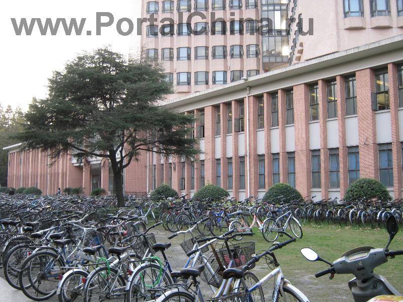 Университет Тунцзи (14)