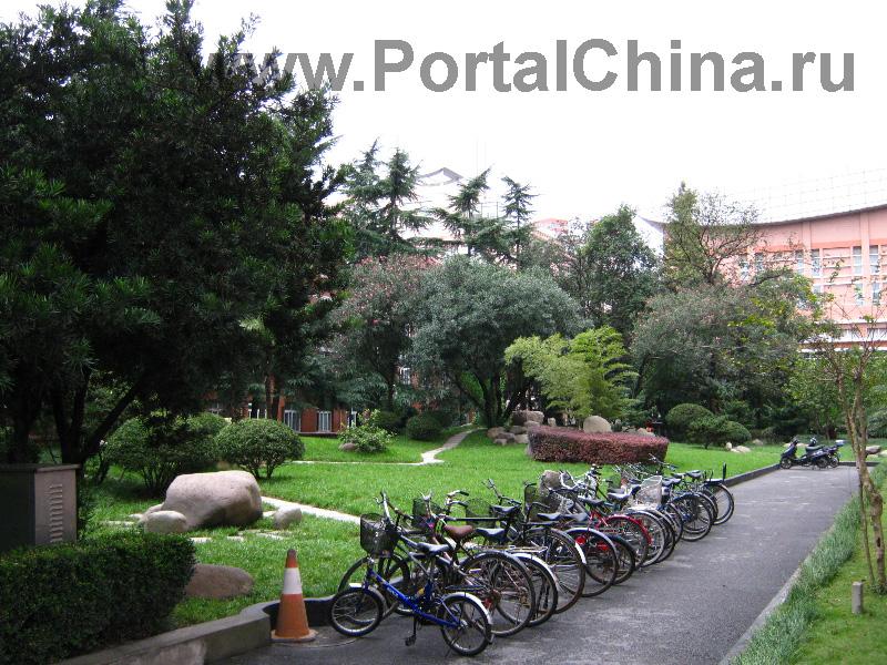 Шанхайский Университет Иностраных Языков (33)