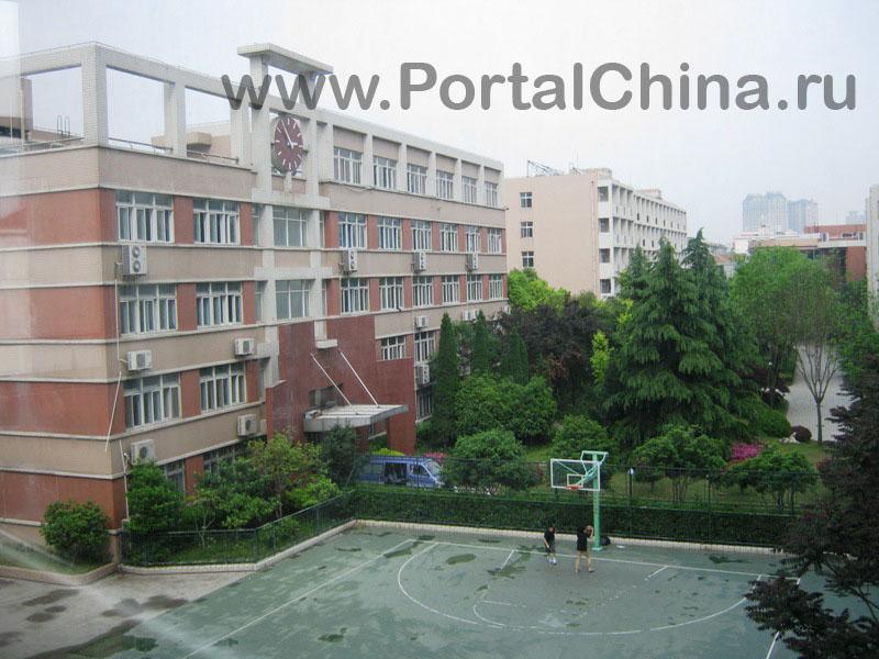 Fudan School (3)