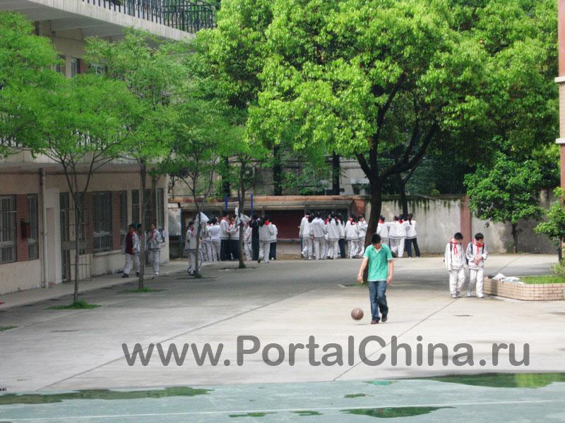 Fudan School (9)