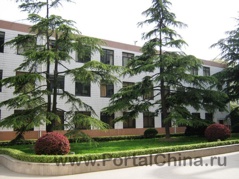 Jiaotong School (14)