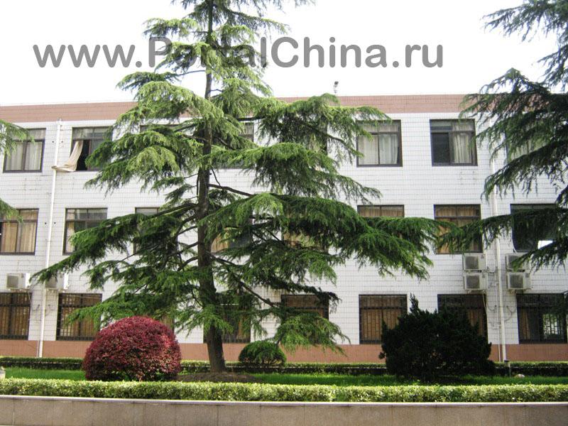 Jiaotong School (16)