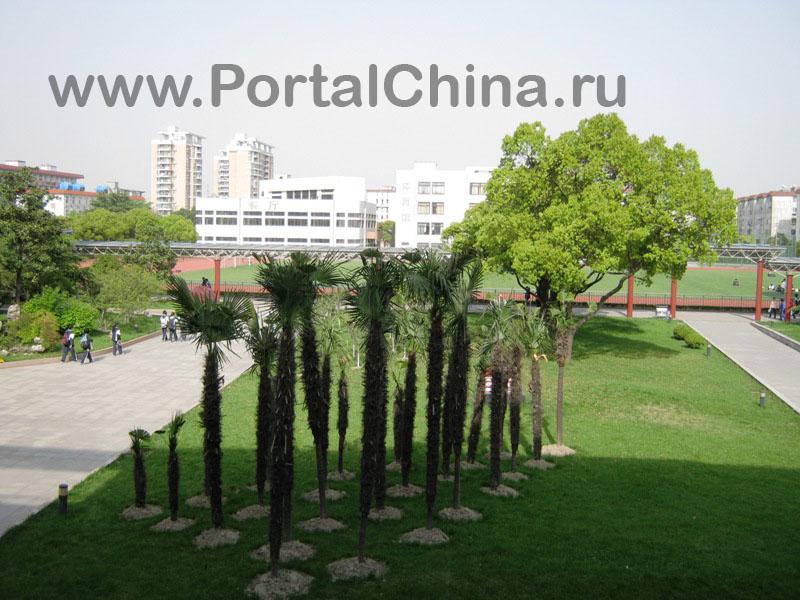 Jiaotong School (2)