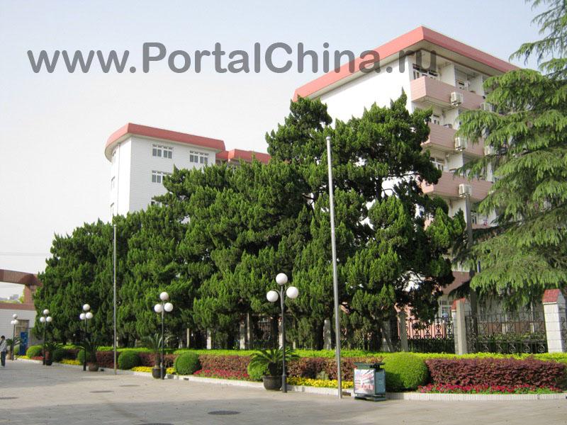 Jiaotong School (22)