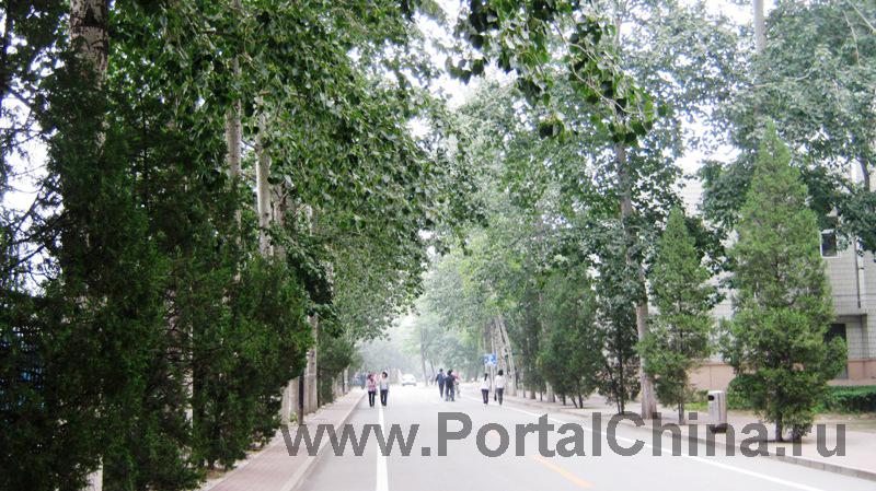 Beijing Jiaotong (23)