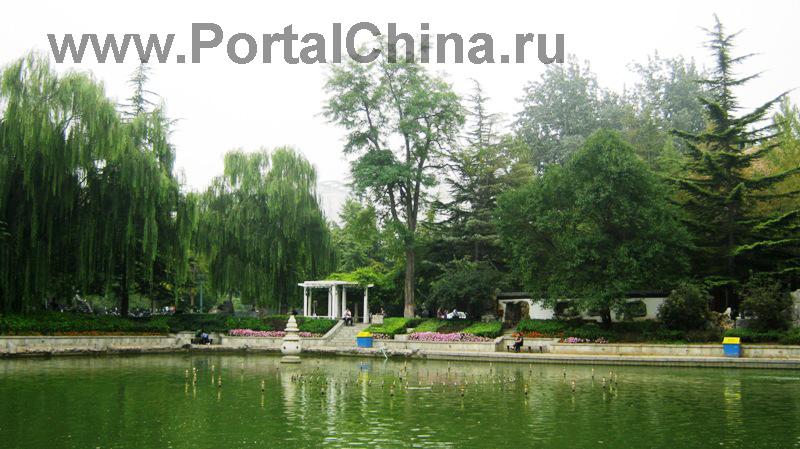 Beijing Jiaotong (28)