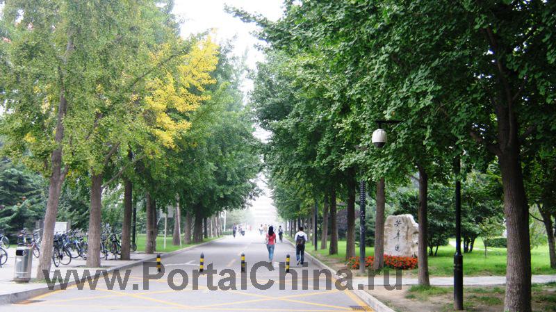 Beijing Jiaotong (32)