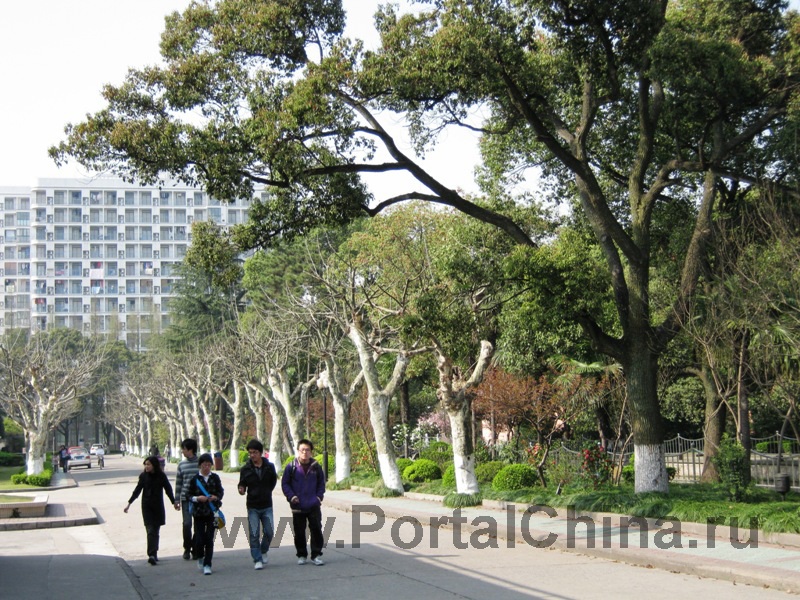 East-China-University-of-Science-and-Technology (20)