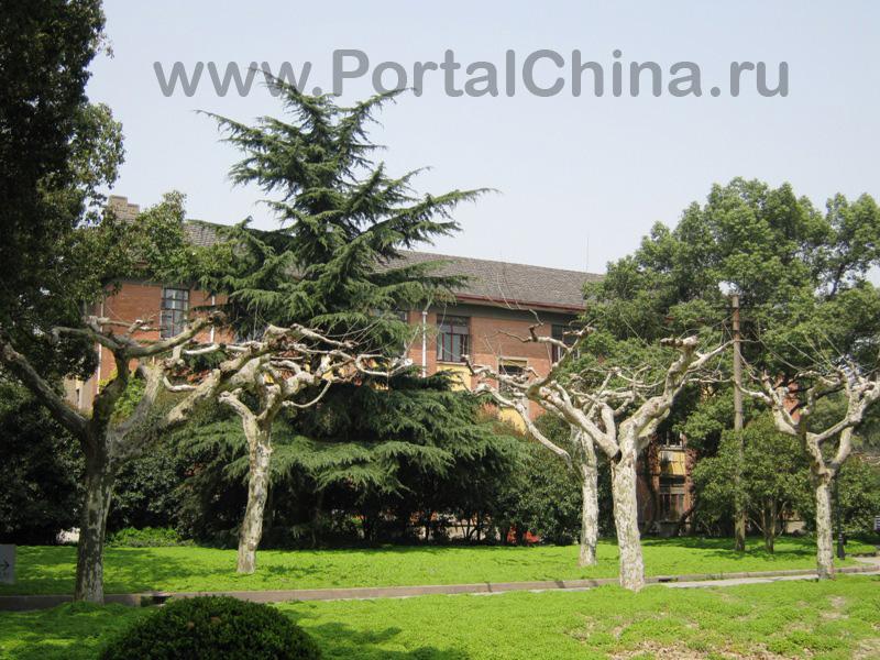 Shanghai Normal University (38)