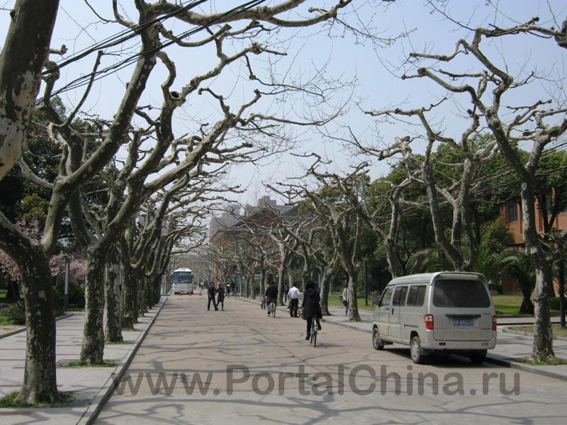 Shanghai Normal University (4)