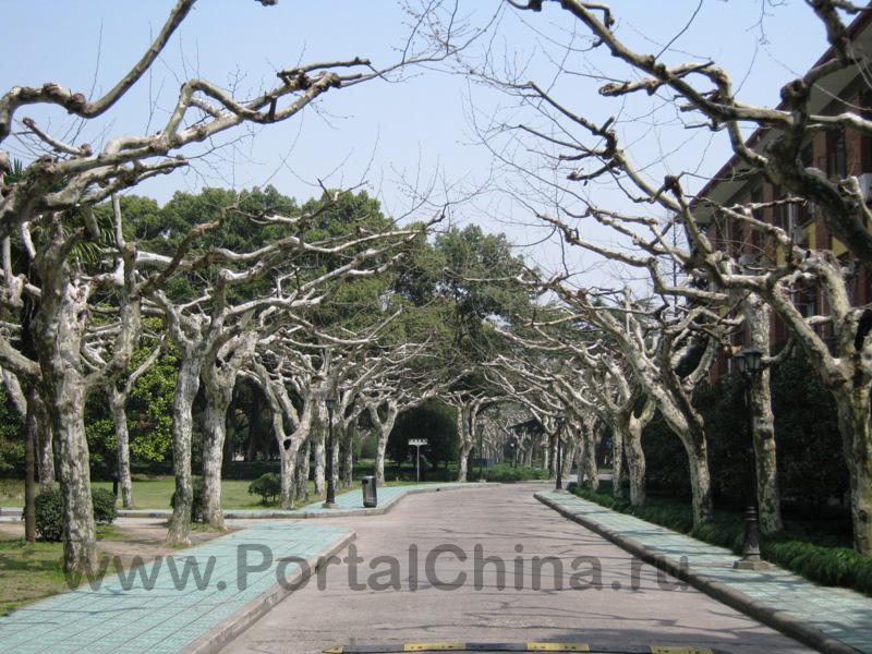 Shanghai Normal University (42)