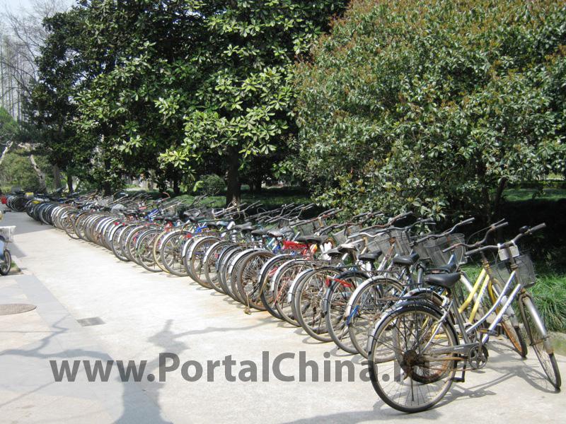 Shanghai Normal University (44)