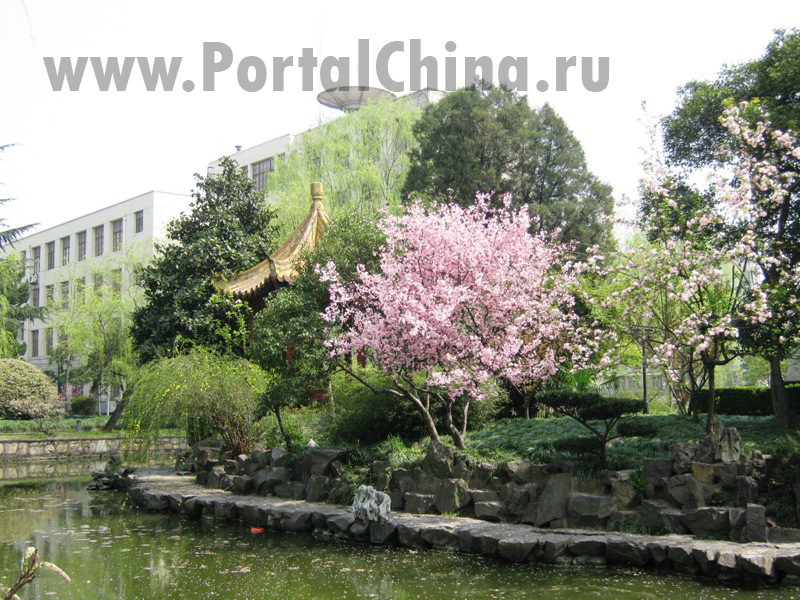 Shanghai Normal University (57)