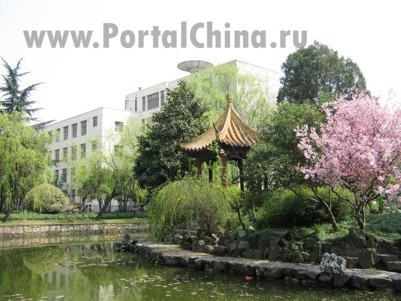 Shanghai Normal University (59)