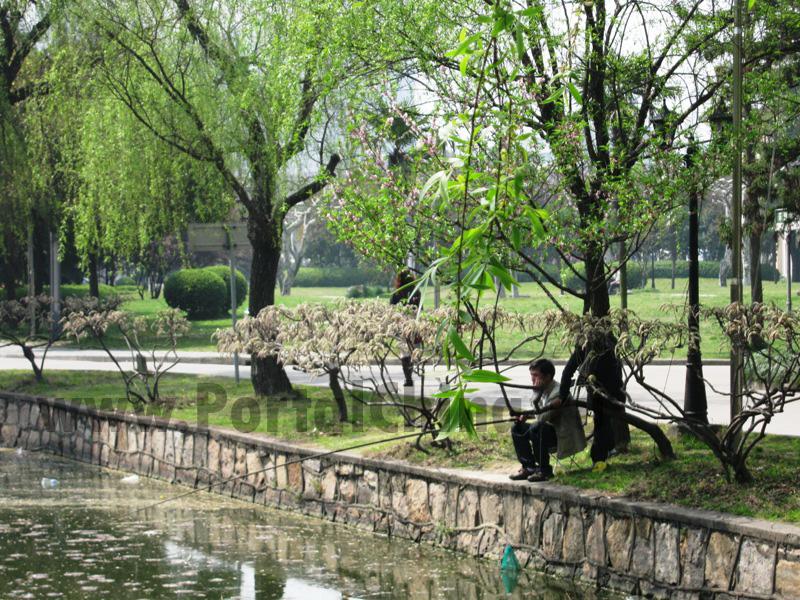 Shanghai Normal University (63)