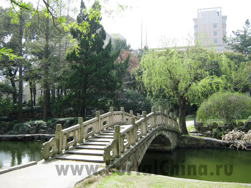 Shanghai Normal University (64)