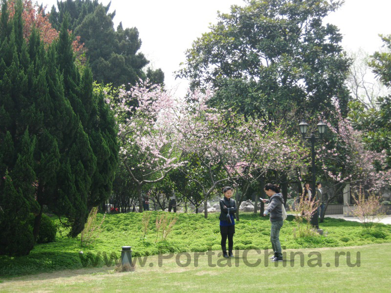 Shanghai Normal University (9)