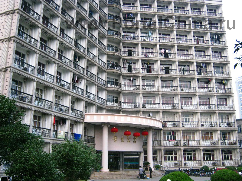 Shanghai University of Finance and Economics (19)