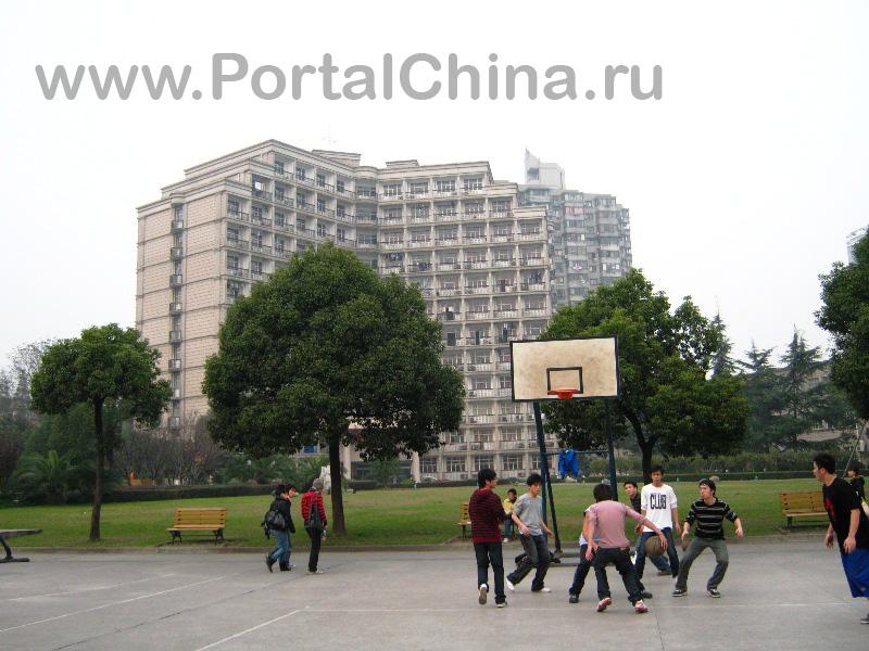 Shanghai University of Finance and Economics (5)