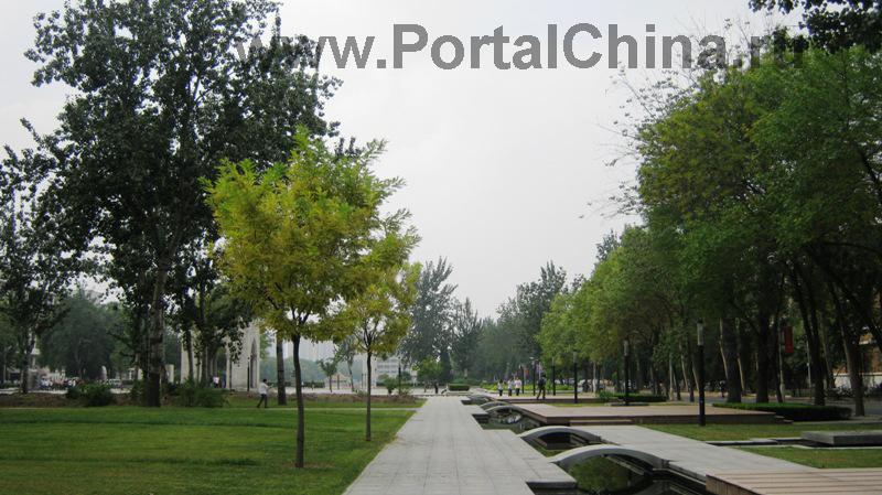 Университетский кампус очень красивый, с множеством прудов и садово-парковой зоной для отдыха