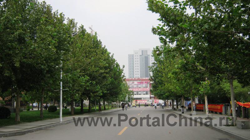 Tianjin-University (21)