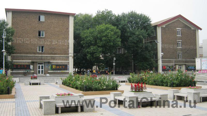Tianjin-University (25)