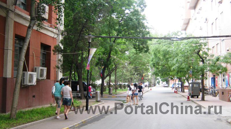 University-Chineese-Medicine (13)