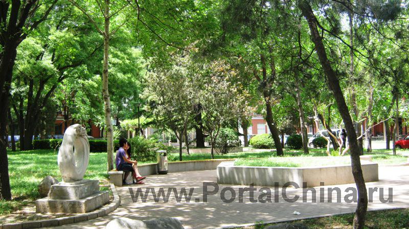 University-Chineese-Medicine (15)