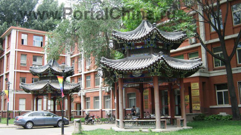 University-Chineese-Medicine (17)