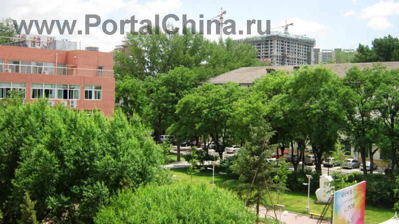 University-Chineese-Medicine (22)