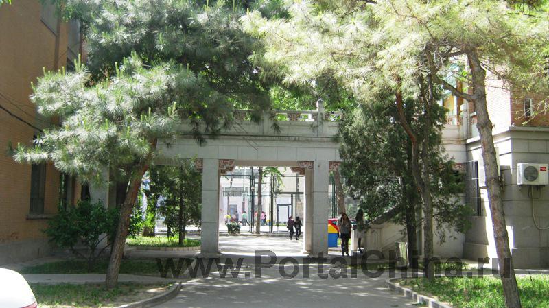 University-of-Architecture (12)