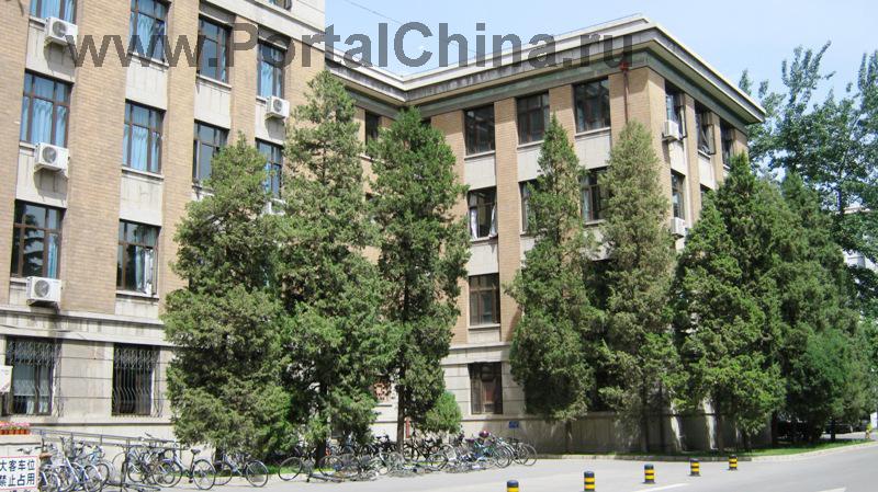 University-of-Architecture (4)