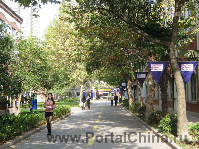 Sino-British-College-Shanghai (3)