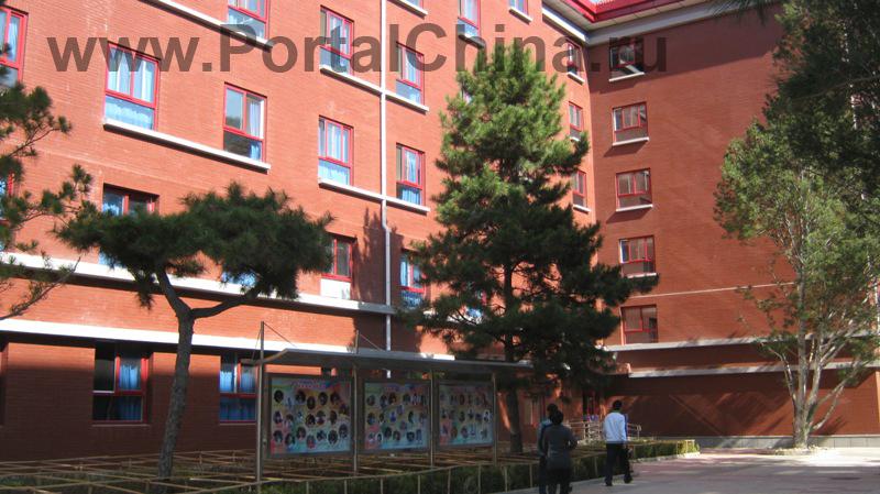 Beijing National Day School (10)