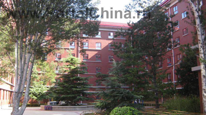 Beijing National Day School (11)
