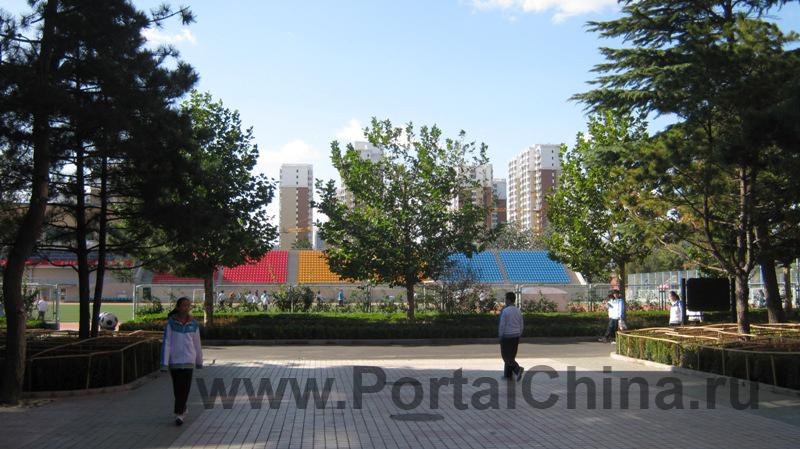 Beijing National Day School (12)