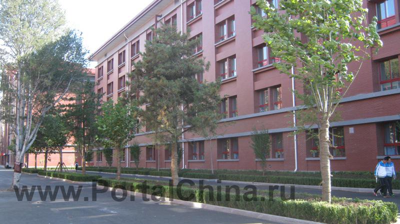 Beijing National Day School (18)