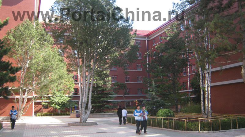 Beijing National Day School (9)