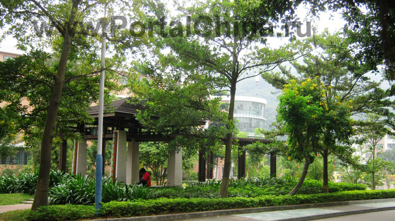 Guangdong University of Foreign Studies 1 (19)