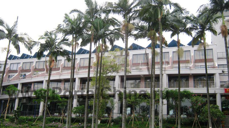 Южно-Китайский технологический университет (SCUT) является одним из основных многопрофильных университетов в Южном Китае, и предлагает студентам следующие программы: инженерно-технические науки, бизнес-менеджмент, экономические науки, гуманитарные науки, право, медико-биологические науки, искусство и дизайн