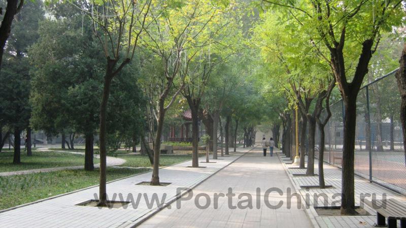 BISU ВТорой Пекинский Иностранных Языков (10)
