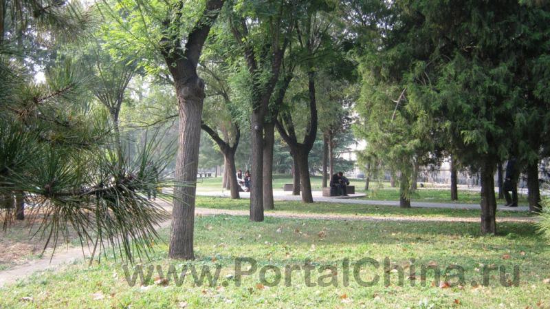 BISU ВТорой Пекинский Иностранных Языков (14)