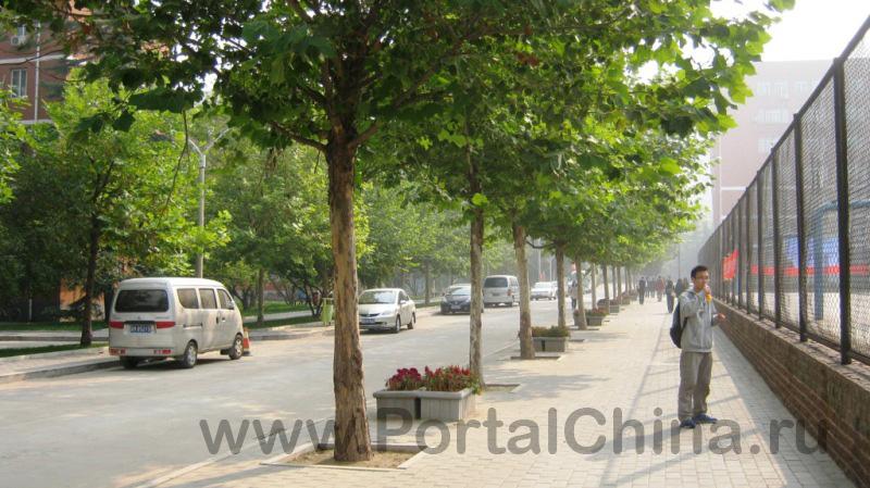 BISU ВТорой Пекинский Иностранных Языков (17)