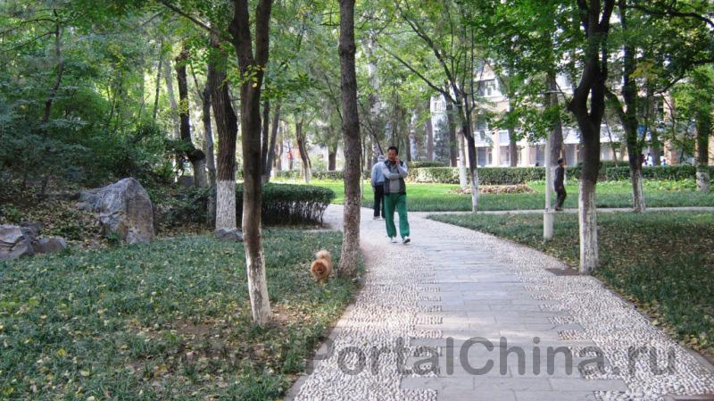 Beihang University (10)