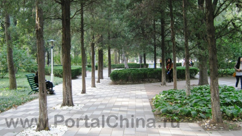 Beihang University (3)