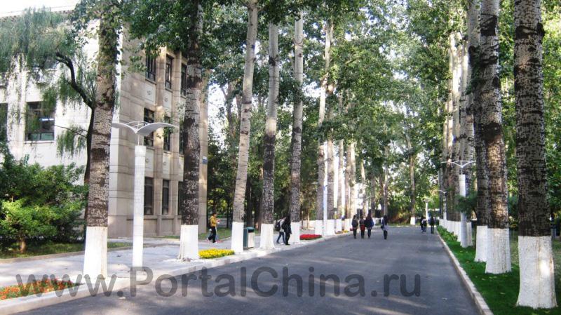 Beihang University (6)