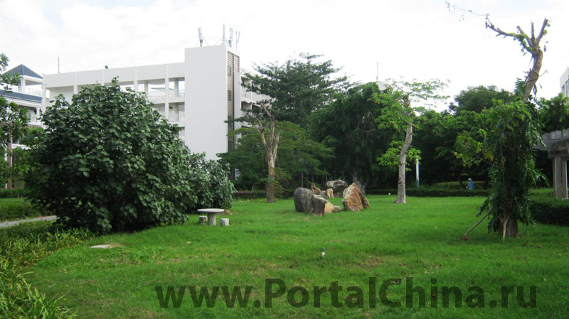 Aviation College (31)