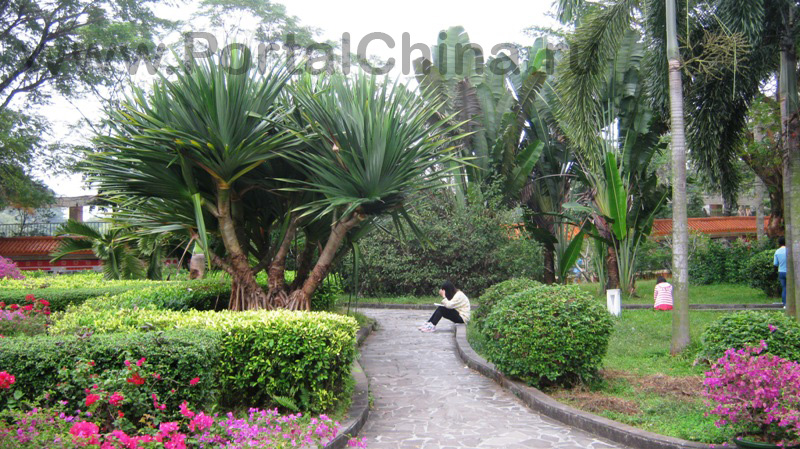 Hainan Normal University (15)